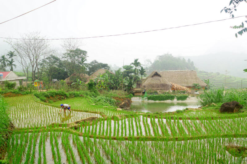 the best time to visit pu luong