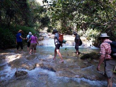 visitting Deer Waterfall
